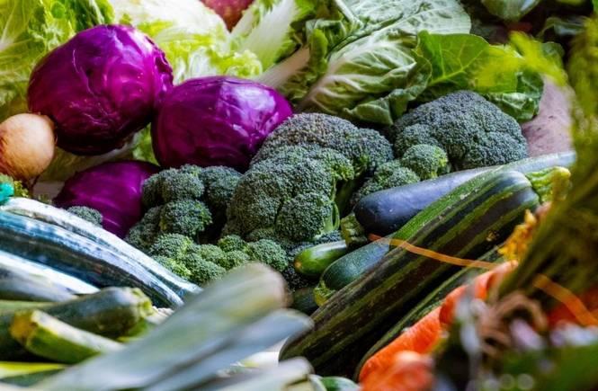 Roma approva la Food Policy, la delibera su produzione e consumo di prodotti locali