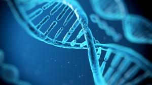 DNA - Lam Alif - close up