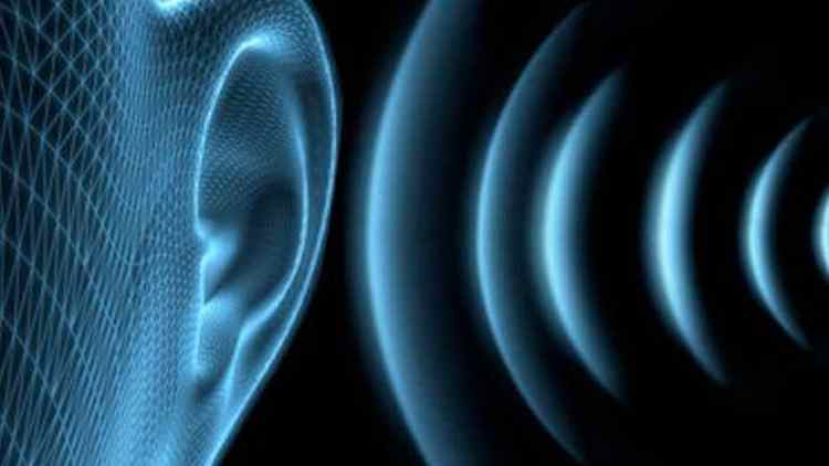 Ear – Hearing – sound waves vibrations_oracletalk-