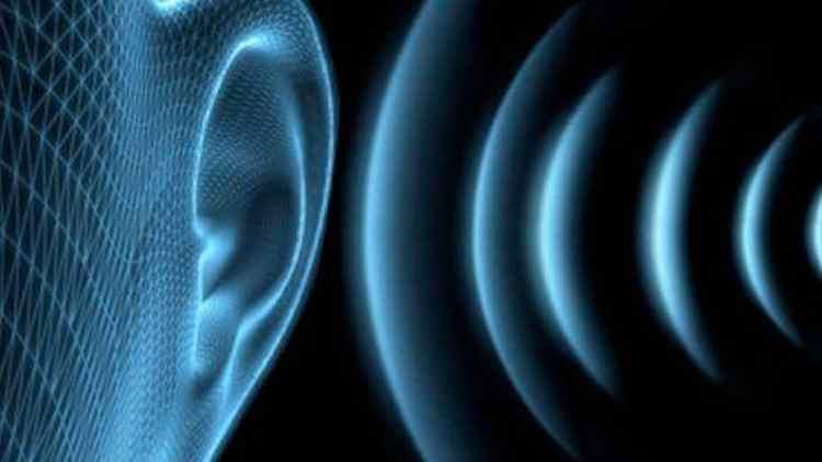 Ear – Hearing – sound waves vibrations_oracletalk-