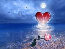 Heart of the ocean, rose on the shore