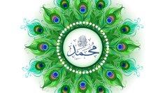 Urdu – پرندے اولیاء اللہ کی علامت ہیں– وہ ان