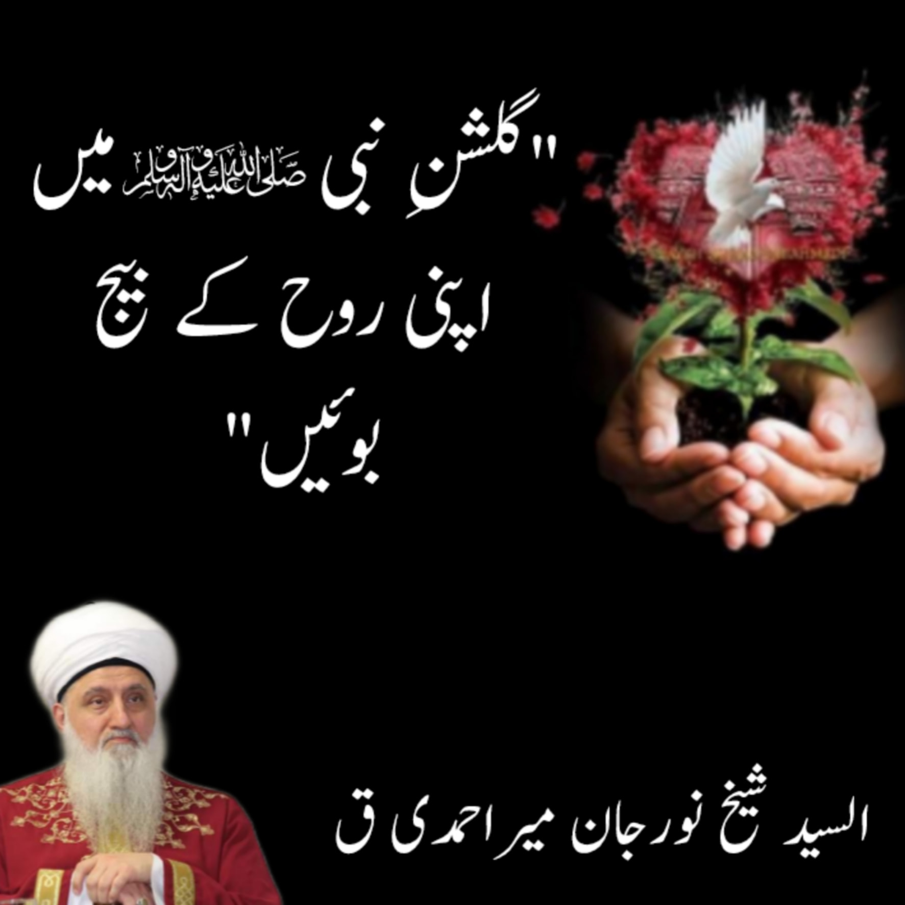 """""""Plant the seed of your soul in the Garden of Prophet ﷺ""""  As Sayyed Shaykh Nur..."""