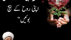 """Urdu – """"Plant the seed of your soul in the"""
