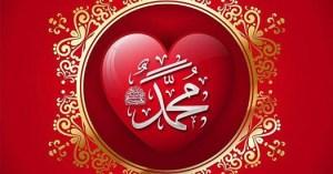 Urdu Articles - Muhammadan Way Realities Haqiqat al Muhammadia