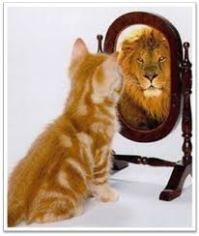 cat_mirrors_lion