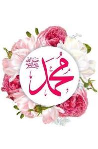 muhammad_pink_flowers