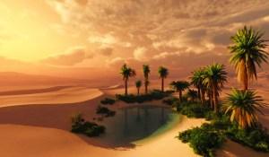 oasis in desert, caravan of love,