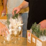 evergreen seedlings for wedding gifts