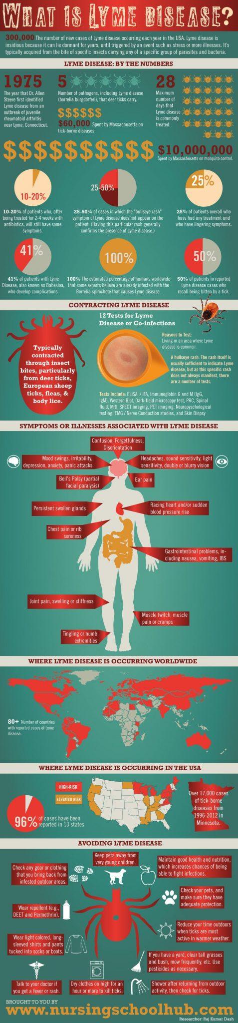 What is Lyme Disease