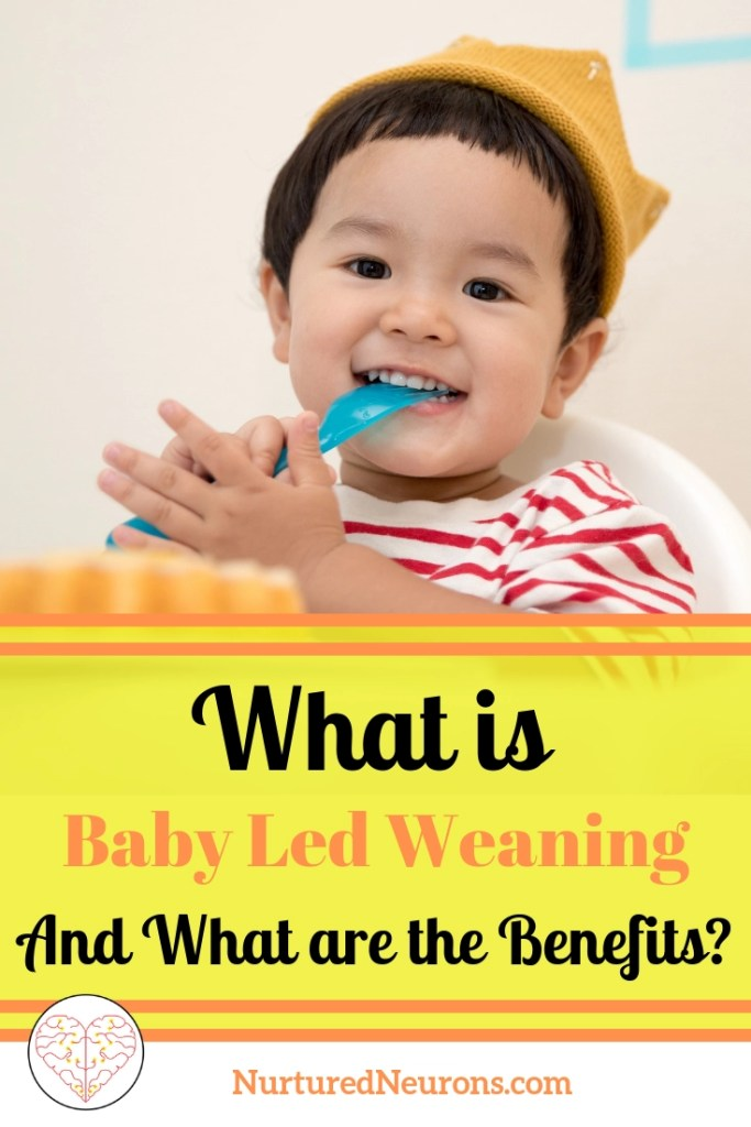 What is Baby Led Weaning? What are the benefits?