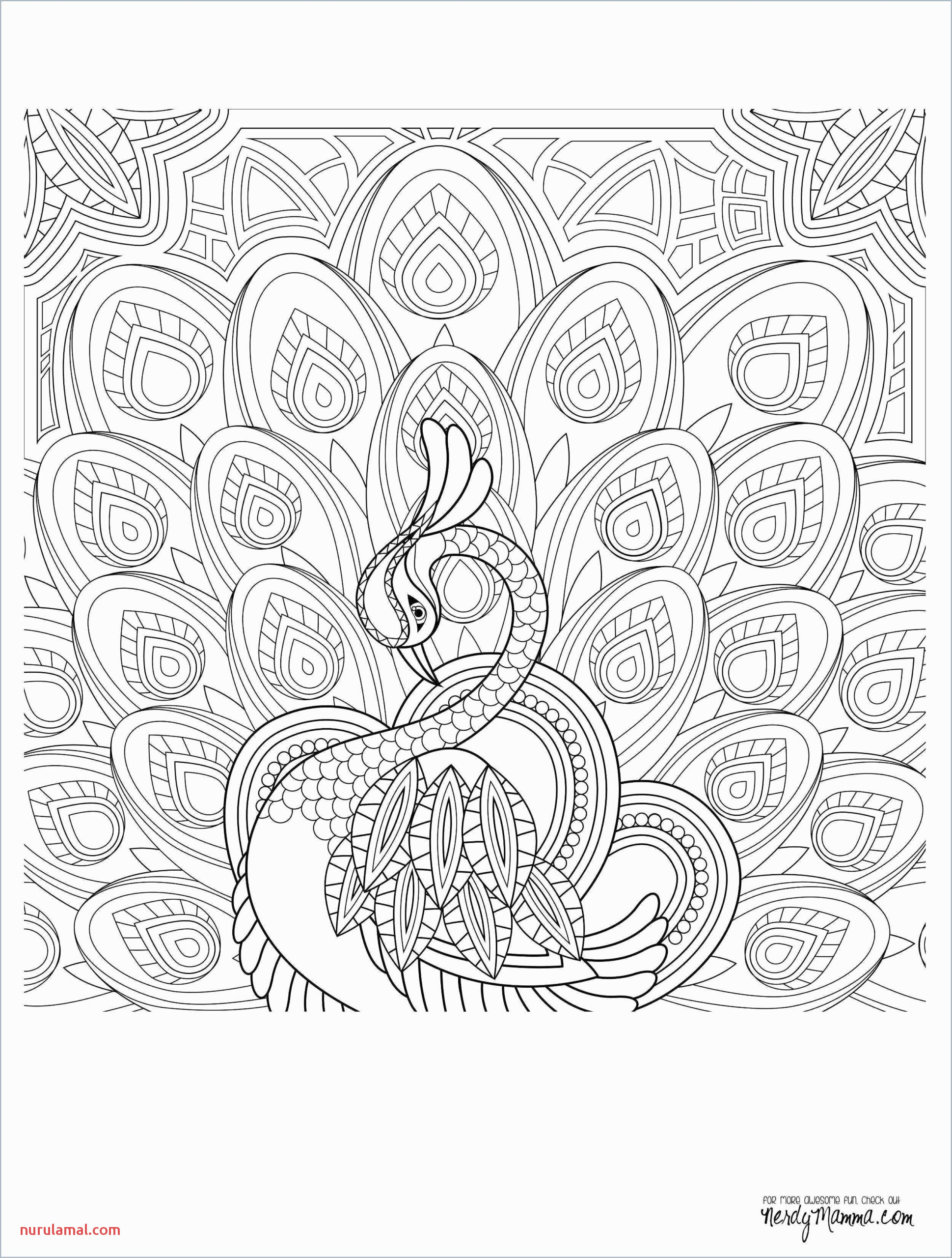Math Coloring Puzzles Worksheets