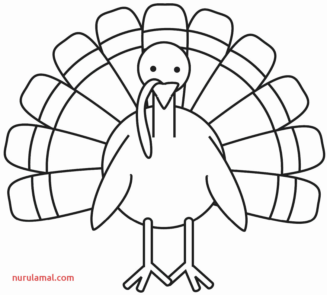 Thanksgiving Turkey Worksheets For 6th Grade Math