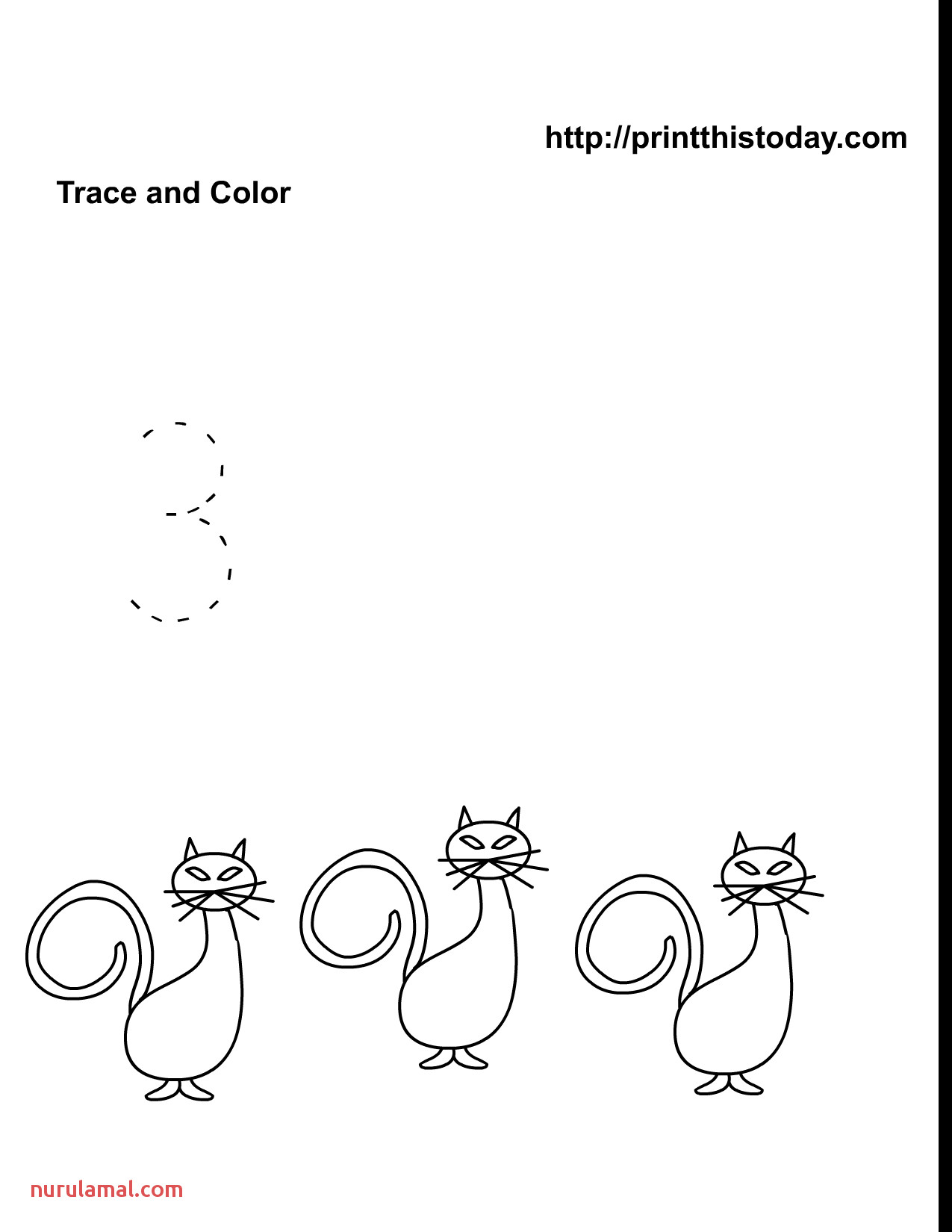 Pumpkin Math Worksheets Preschool