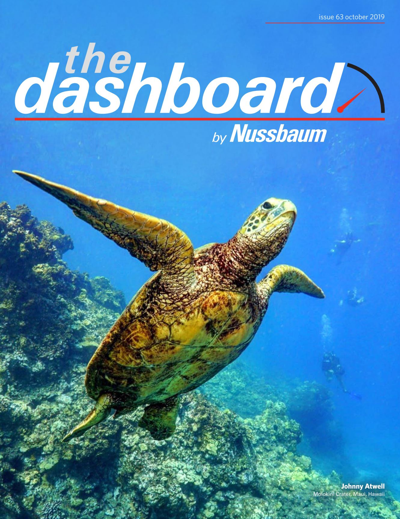 The Dashboard by Nussbaum