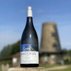 Nutbourne Bacchus 2019