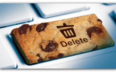 Opt out of browser advertiser cookies instantly