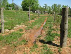 contour ditches