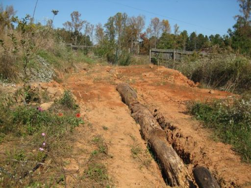 earthworks - terrace with contour ditch and tree trunks