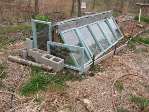the composite raised bed half of which serves as a simple cold frame