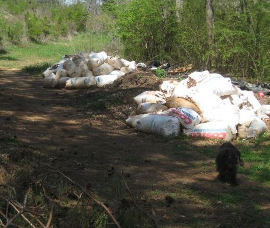2 piles of leaf bags awaiting consolidation and mixing