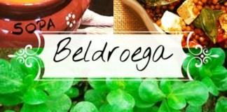 Beldroega - nutrição integrativa-nutrição funcional