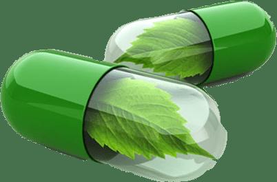 bio-reguladores