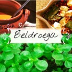 beldroega_destaque