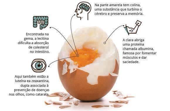 dicas saudáveis do ovo