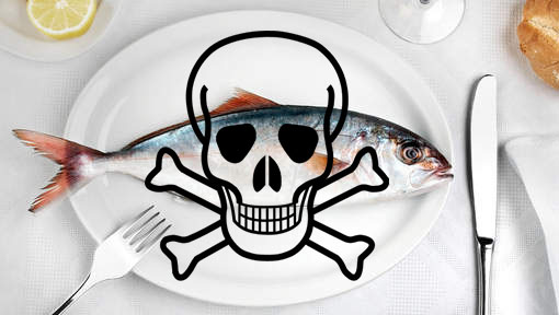 peixe_toxico