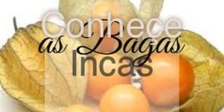 bagas_incas