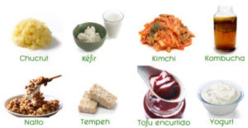 alimentos_fermentados