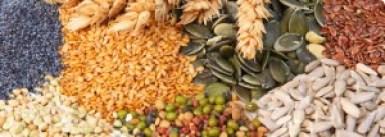 céréales, légumineuses complets