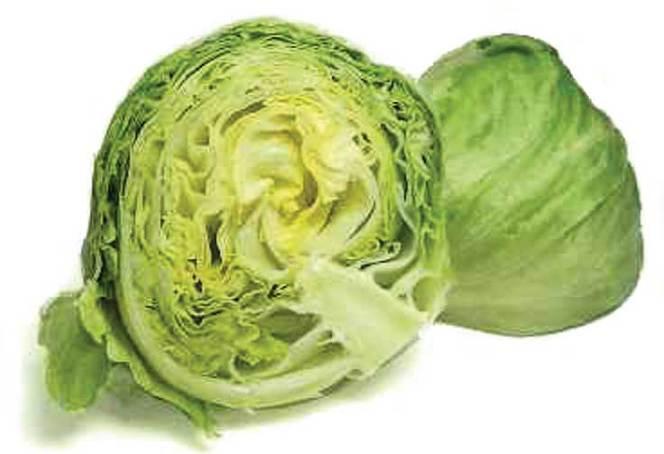 iceberg-lettuce