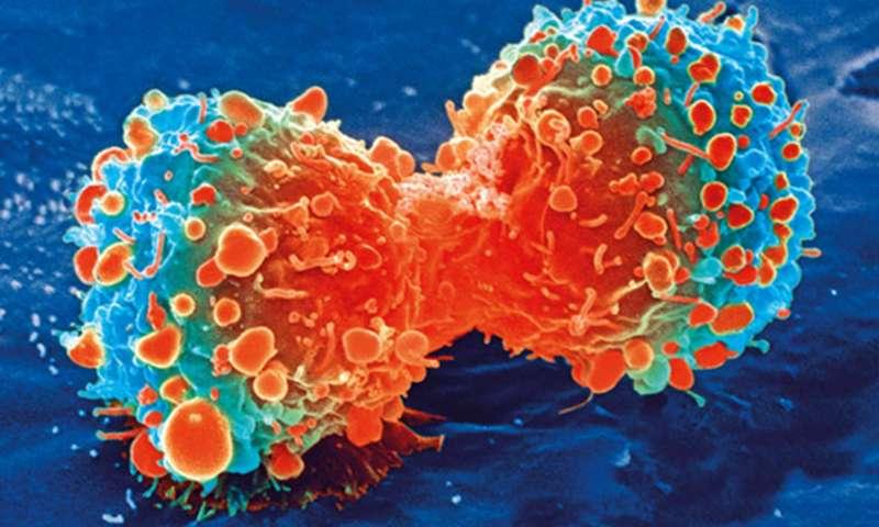 Rezistenţa la insulină şi cancerul