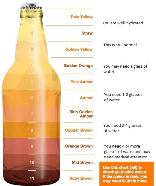 Printable Urine Color Charts For Dehydration,Urine.Printable