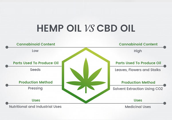 You are currently viewing CBD vs Hemp oil