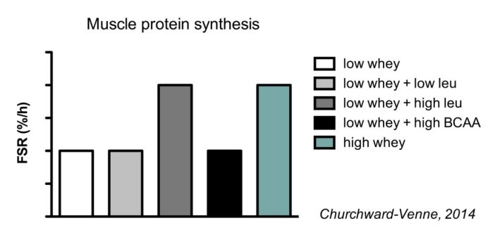 Muscle protein synthesis following whey, leucine and BCAA supplementation