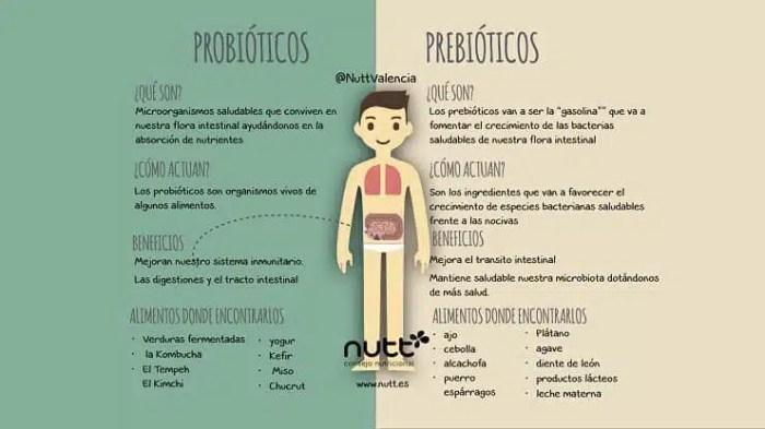 Resultado de imagen de probioticos y prebioticos