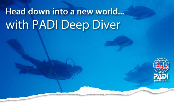 Deep diving image