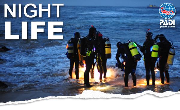 Night diving image