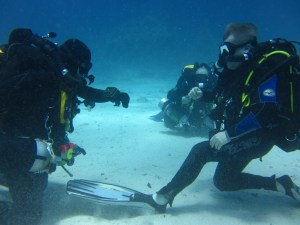 Rebreather training Essex