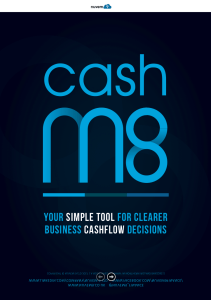 Nuvem9 Small Business Cash Flow tool