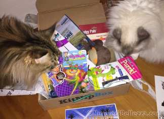 KitNipBox Unboxing July 2015