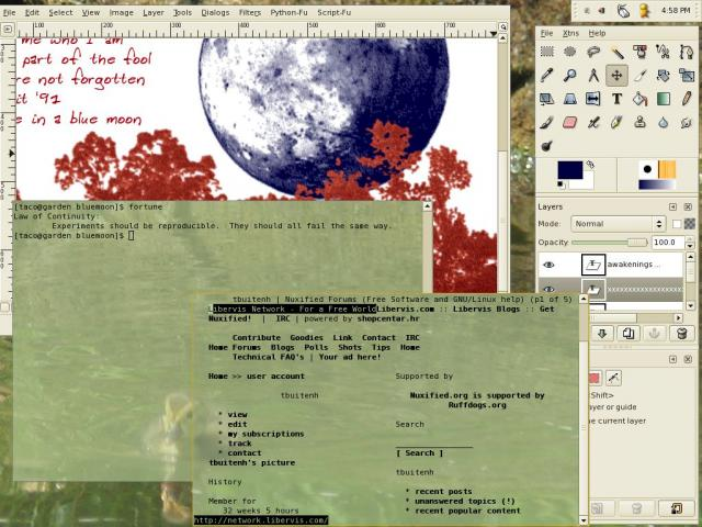 screenshot of archlinux with evilwm
