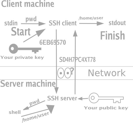 How SSH with Public Key Cryptography Works