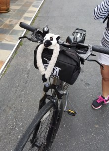 San Francsico vélo