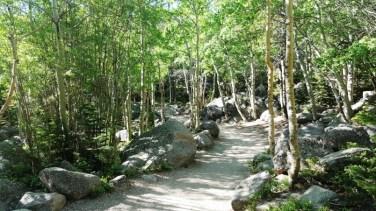 Trail Rocky Mountain