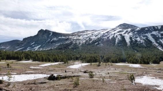 Lembert Dome Yosemite