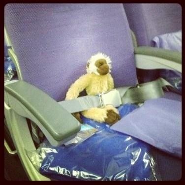 Kiki dans l'avion